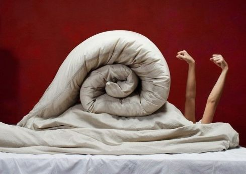 snail on bed